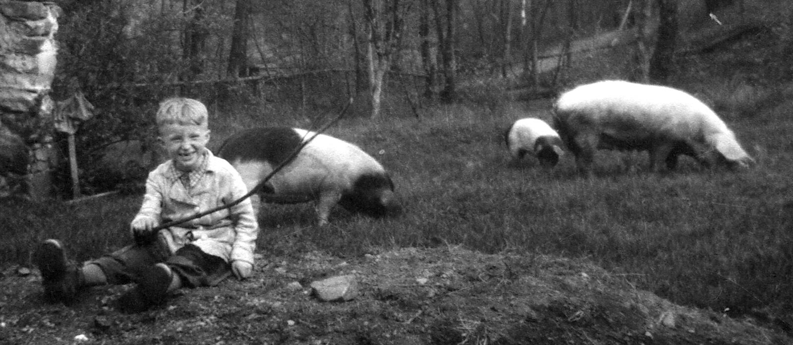 Erlebte Kindheit – Vom Schweinehirt zum Heimatforscher